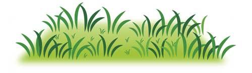 草刈り 大掃除