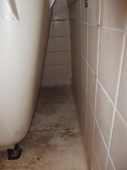 浴室 カビ