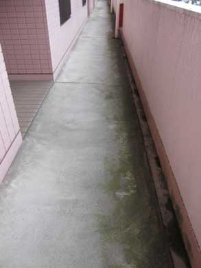 廊下の掃除
